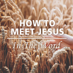 How To Meet Jesus In The Word
